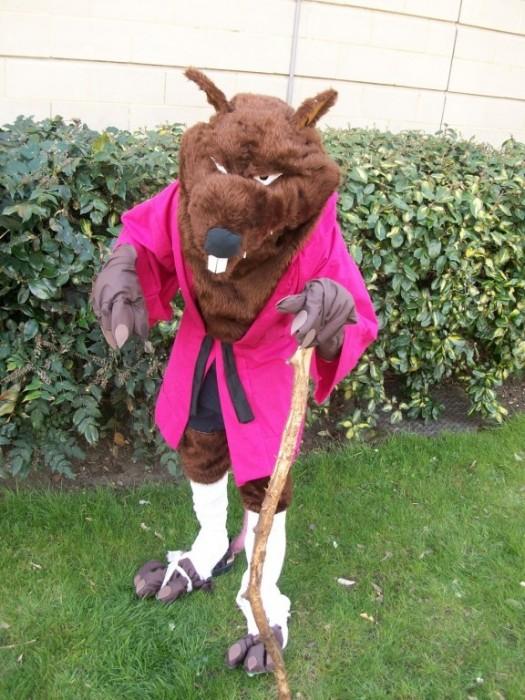 splinter costume