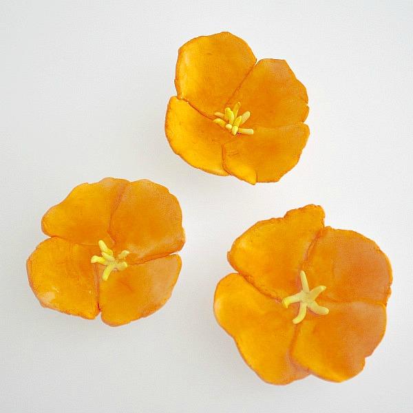 three-flowers-square1
