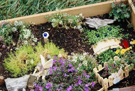 Fairy Container Garden
