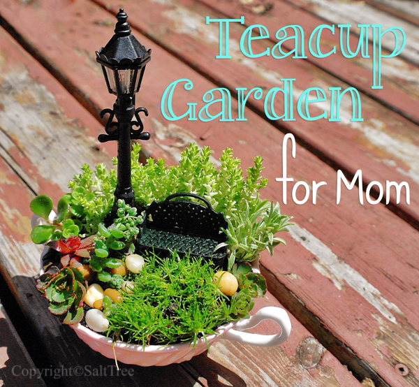 Teacup Fairy Garden for Mom
