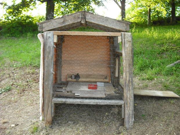 Building an outdoor chicken coop