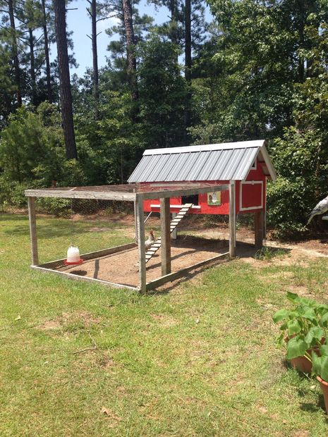 Chicken Coop Can Hold Up to 5
