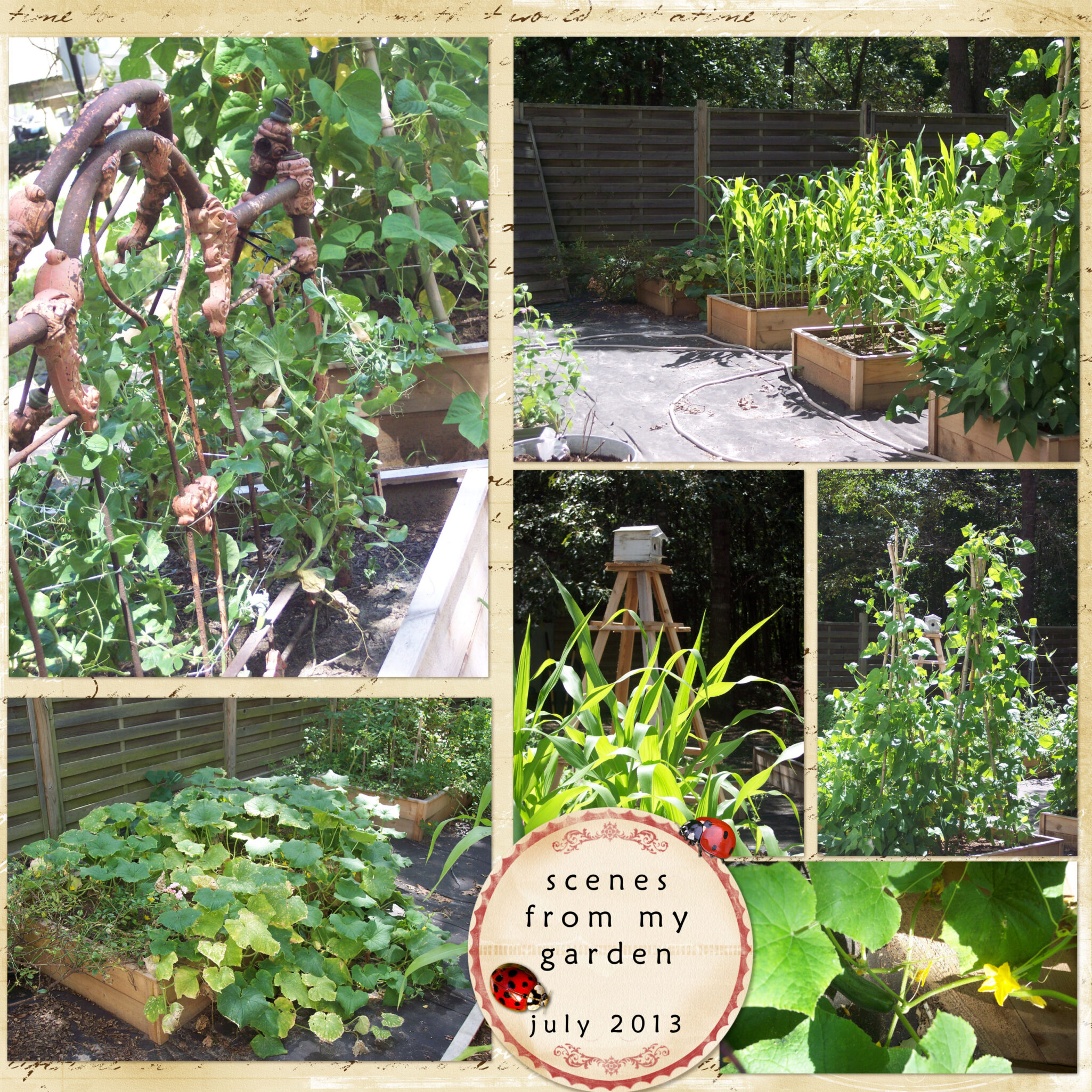 20 Brilliant Raised Garden Bed Ideas You Can Make In A: Raised Bed Garden Planters