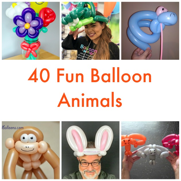picture regarding Balloon Modelling Instructions Printable titled 40 Enjoyment Balloon Pets